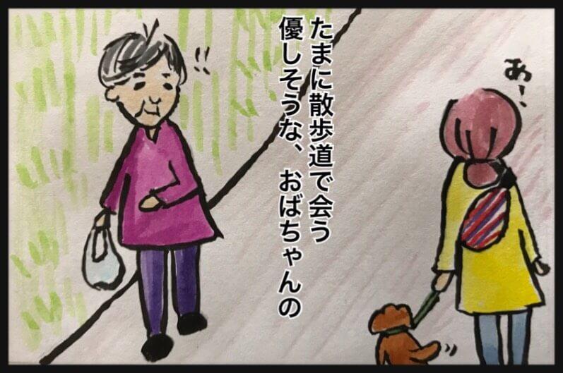 たまに散歩道で会う優しそうな、おばちゃんの