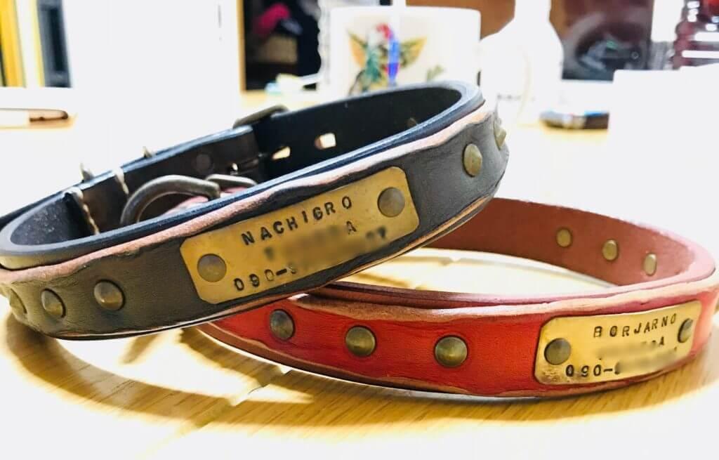 黒い革の首輪と赤い革の首輪