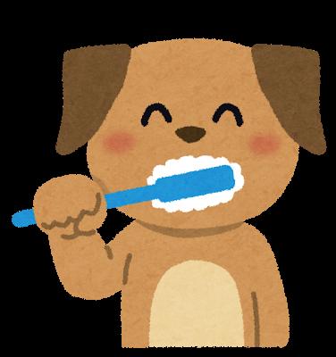 歯磨きする犬