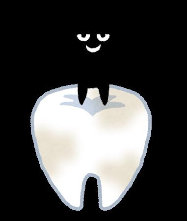 虫歯菌と歯