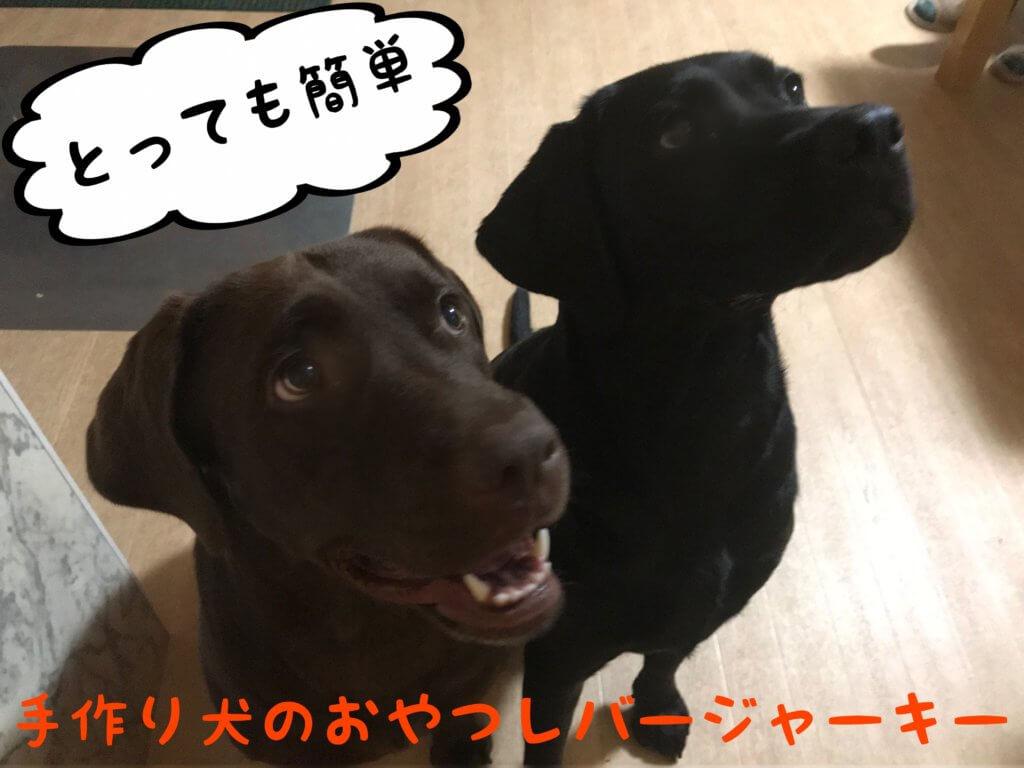 手作り犬のおやつレバージャーキー とっても簡単 チョコラブ黒ラブ