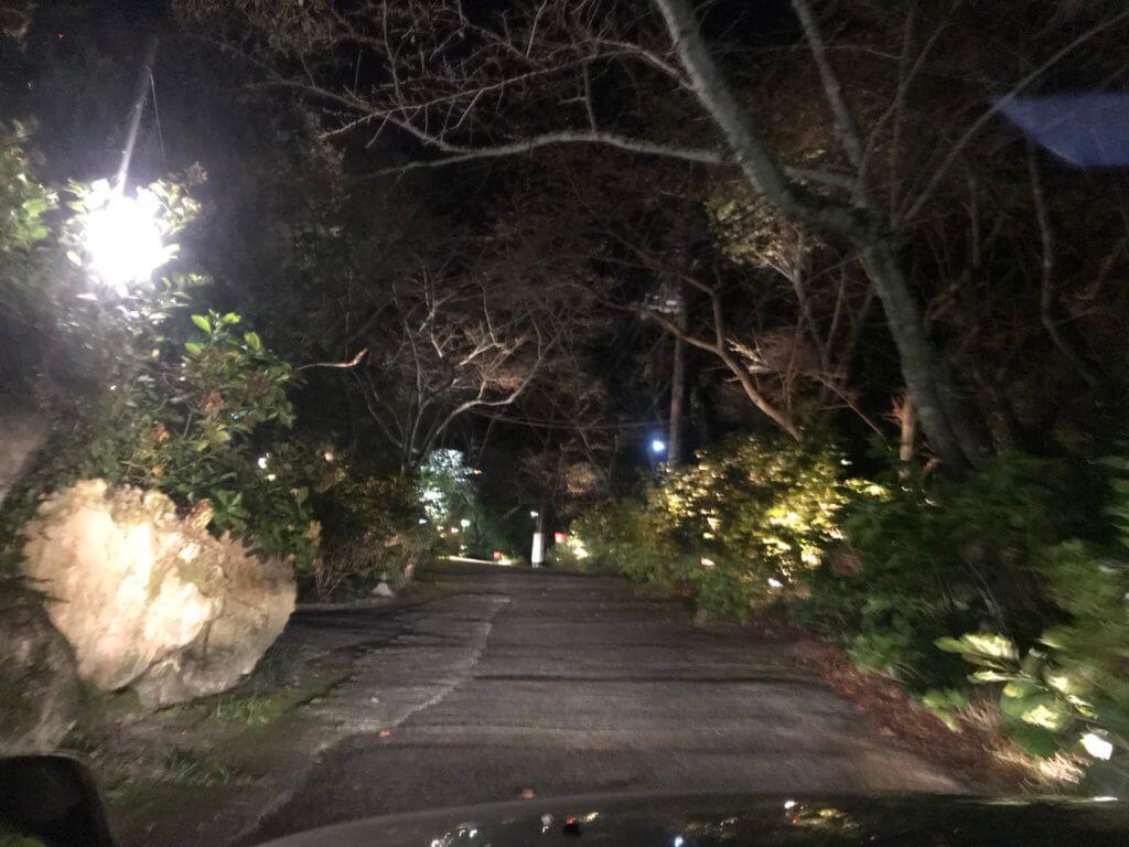 山麓苑の坂道