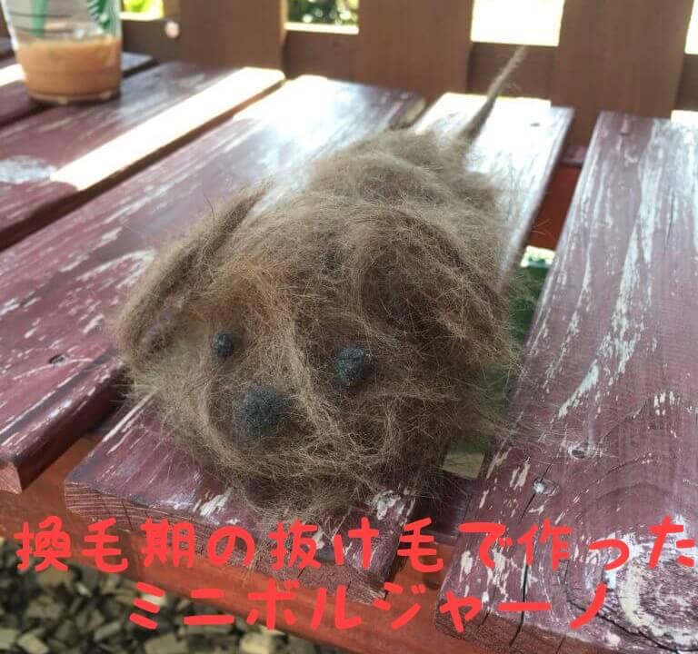 換毛期の抜け毛で作ったミニボルジャーノ