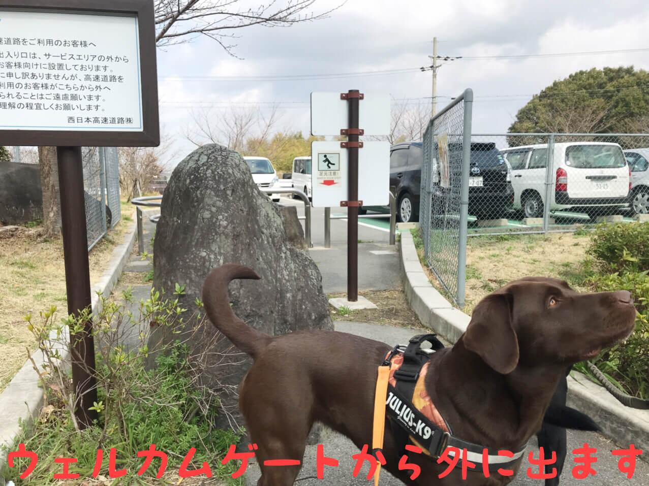 岸和田サービスエリア ウェルカムゲートから外に出ます