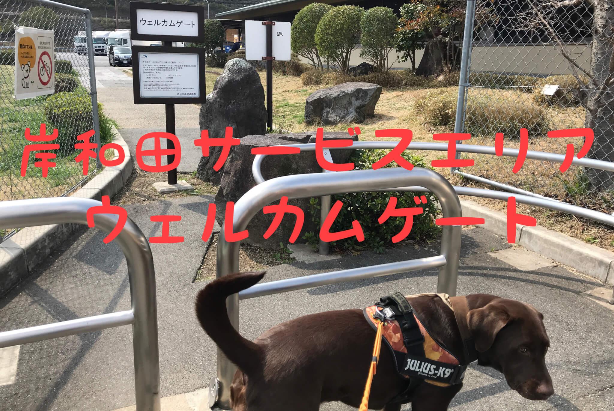 岸和田サービスエリア ウェルカムゲート ラブラドールレトリバー