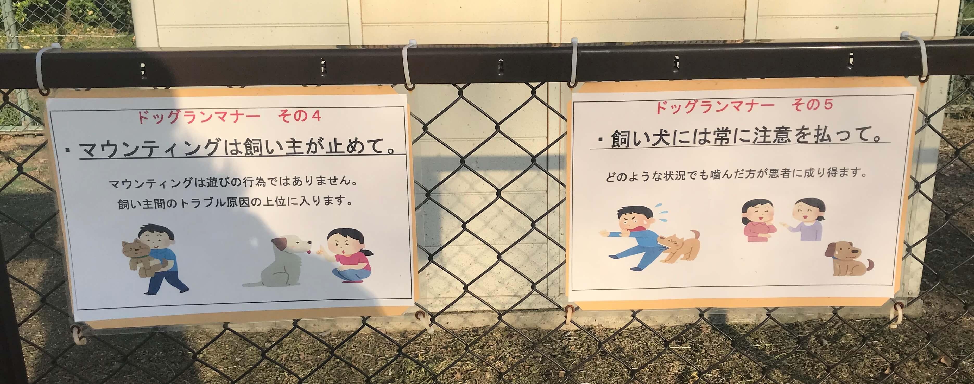 住之江公園ドッグラン ドッグランのマナー マウンティングについて