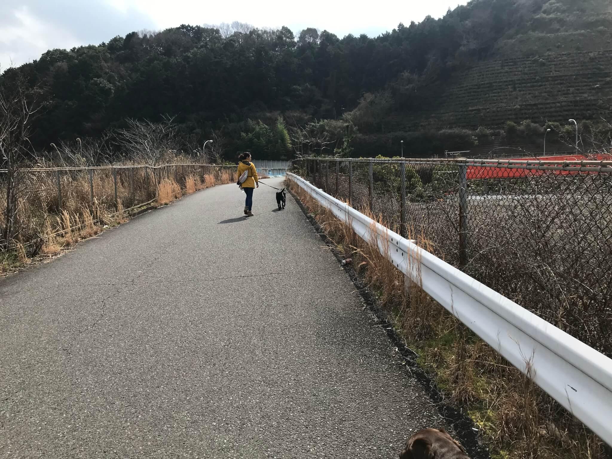阪和自動車道 跨道橋