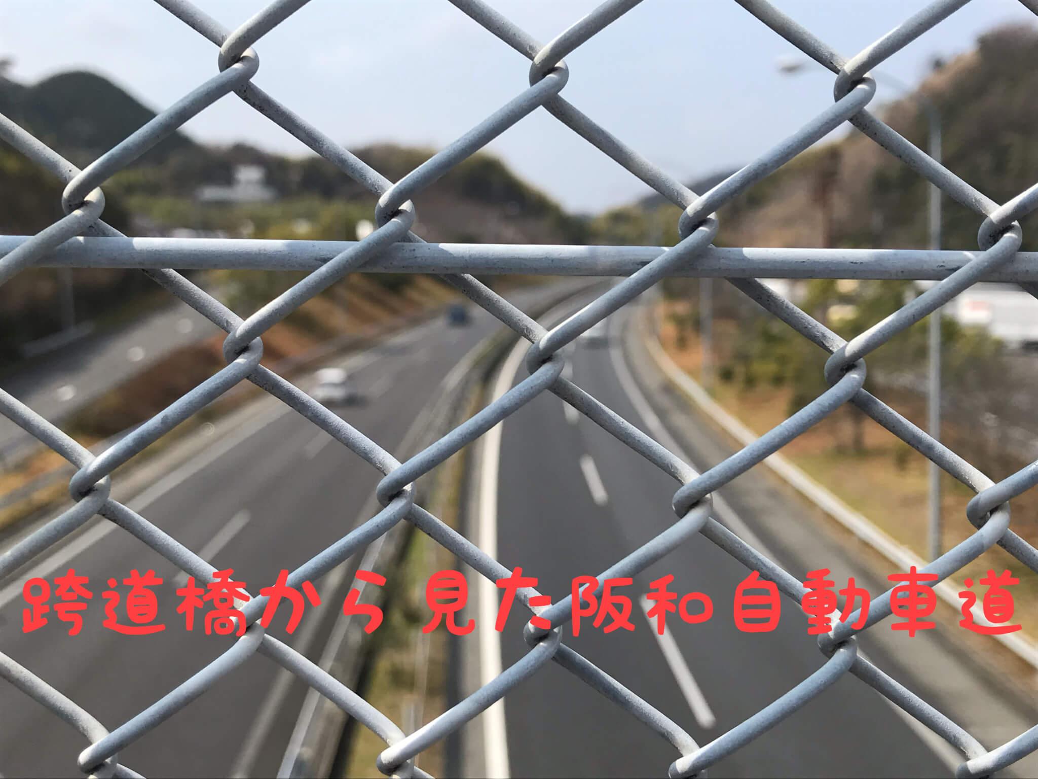 跨道橋から見た阪和自動車道