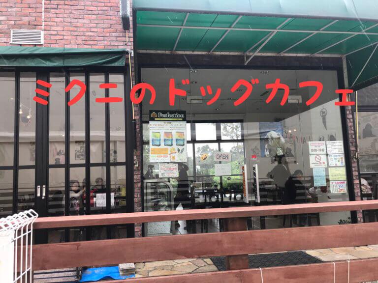 ミクニのドッグカフェ