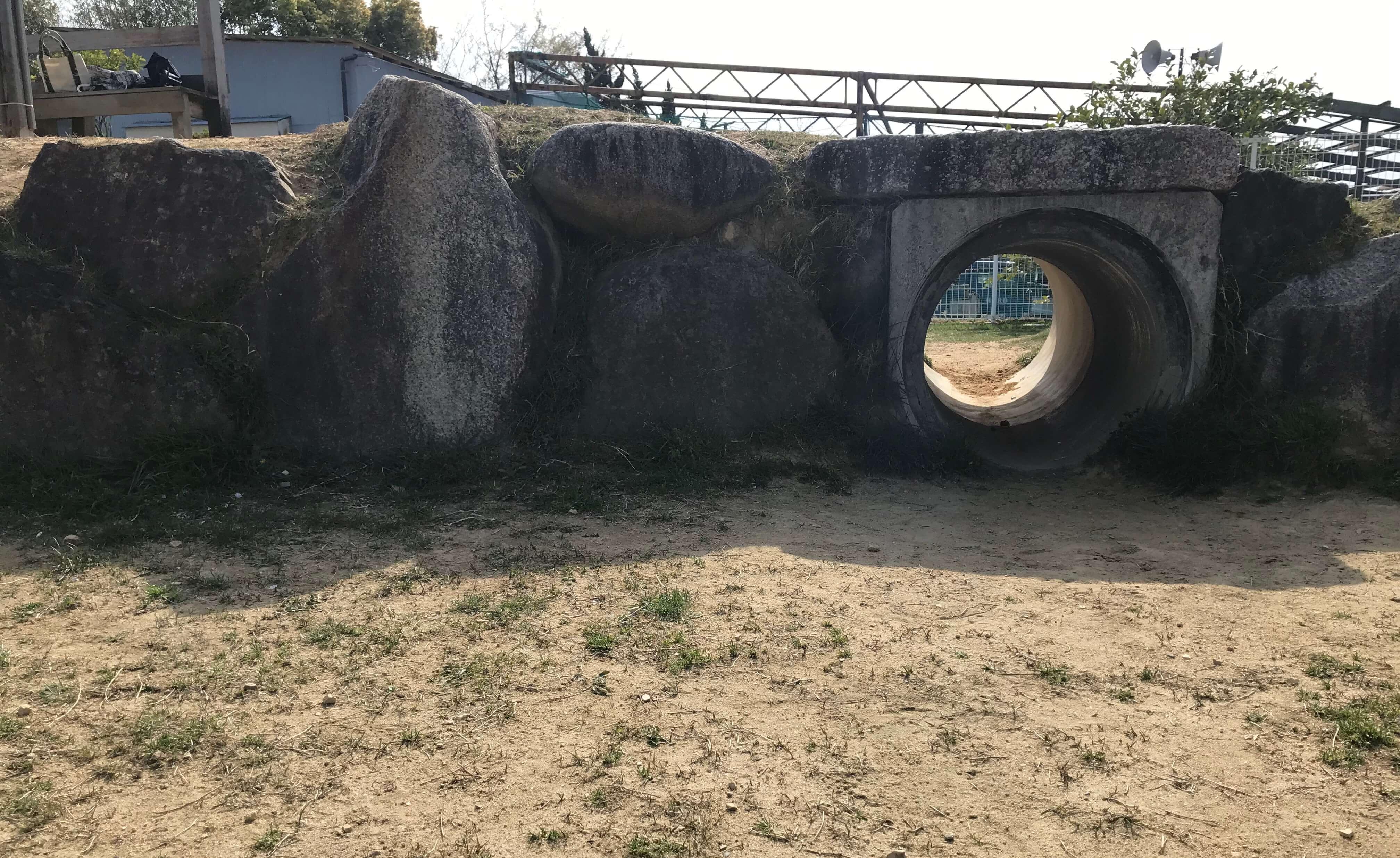 ワイルドガーデンぷらすわん ドッグラン トンネル
