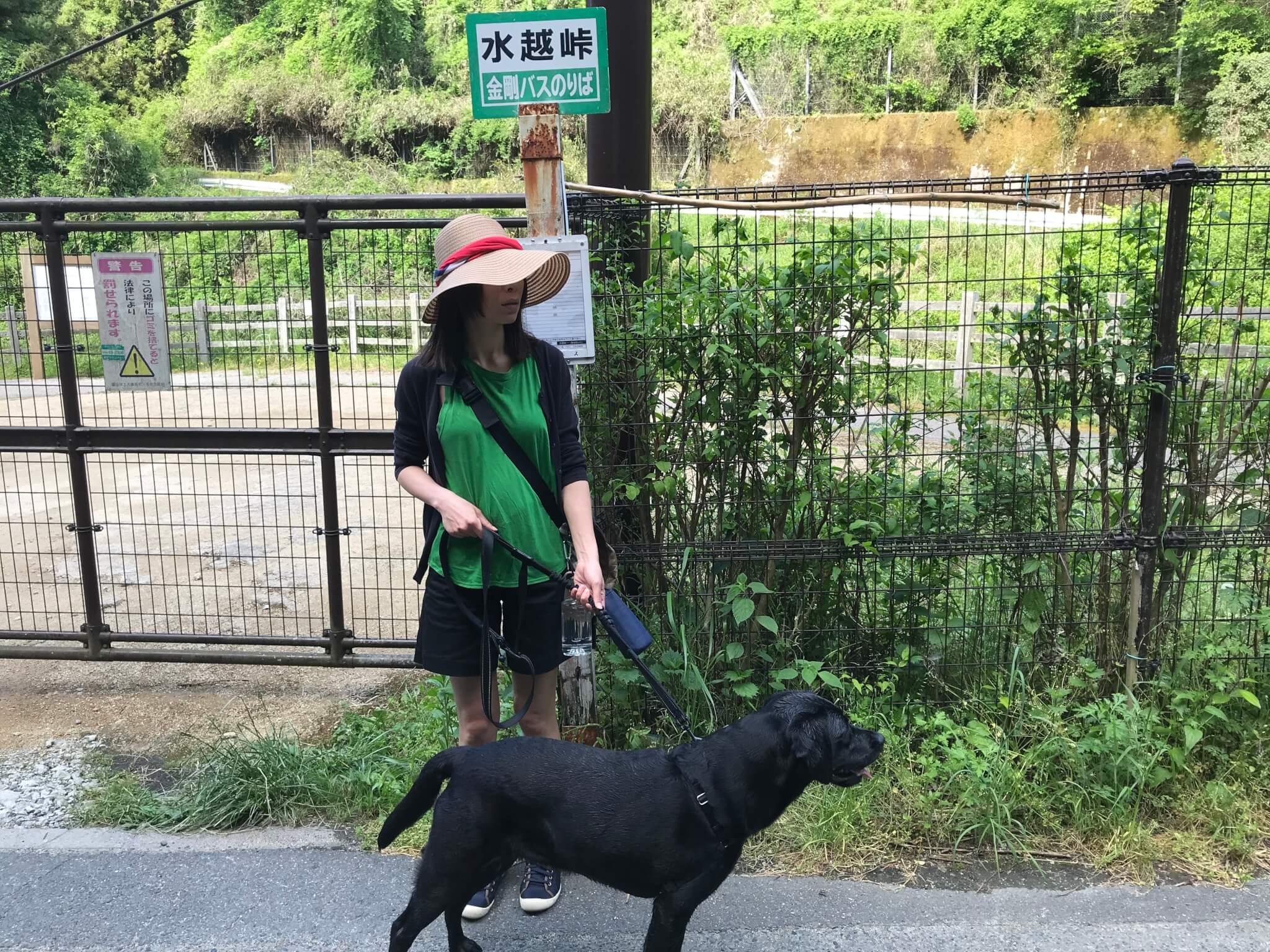 水越峠 バス停 犬
