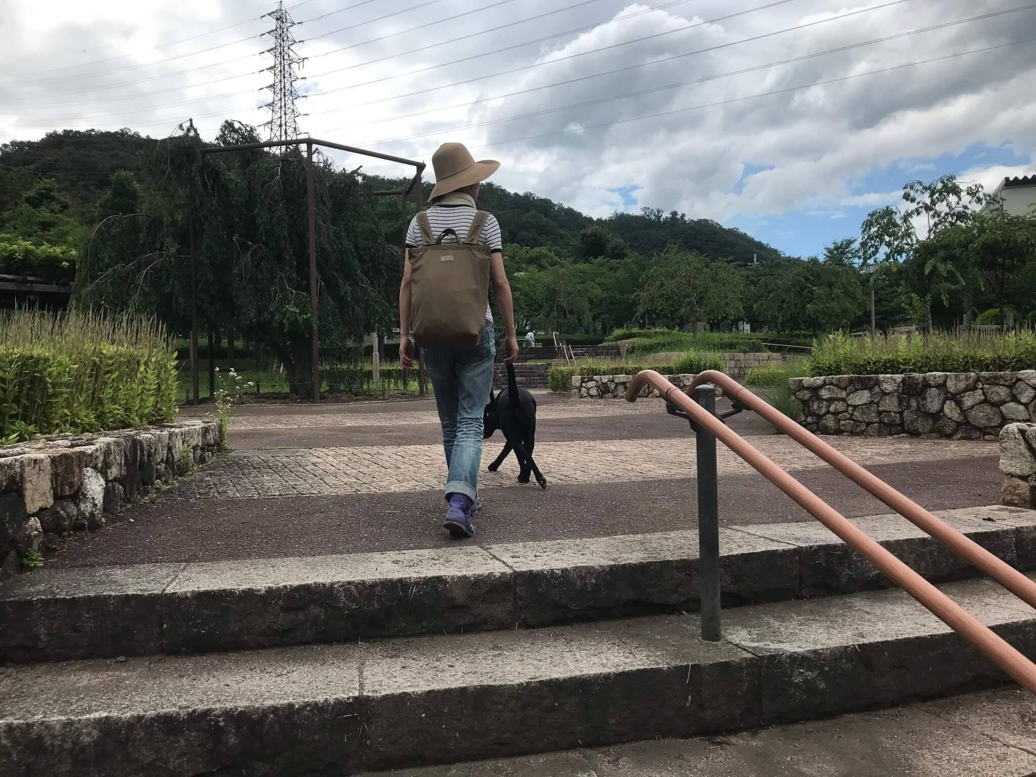 摂津峡公園 ラブラドールレトリバー