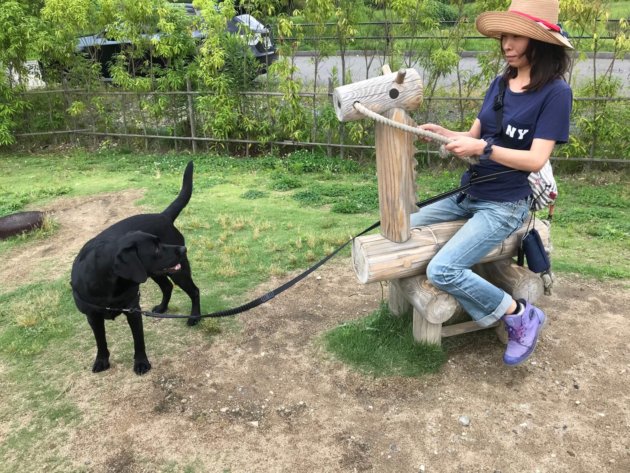 くろまろの郷 ラブラドールレトリバー 木製の馬