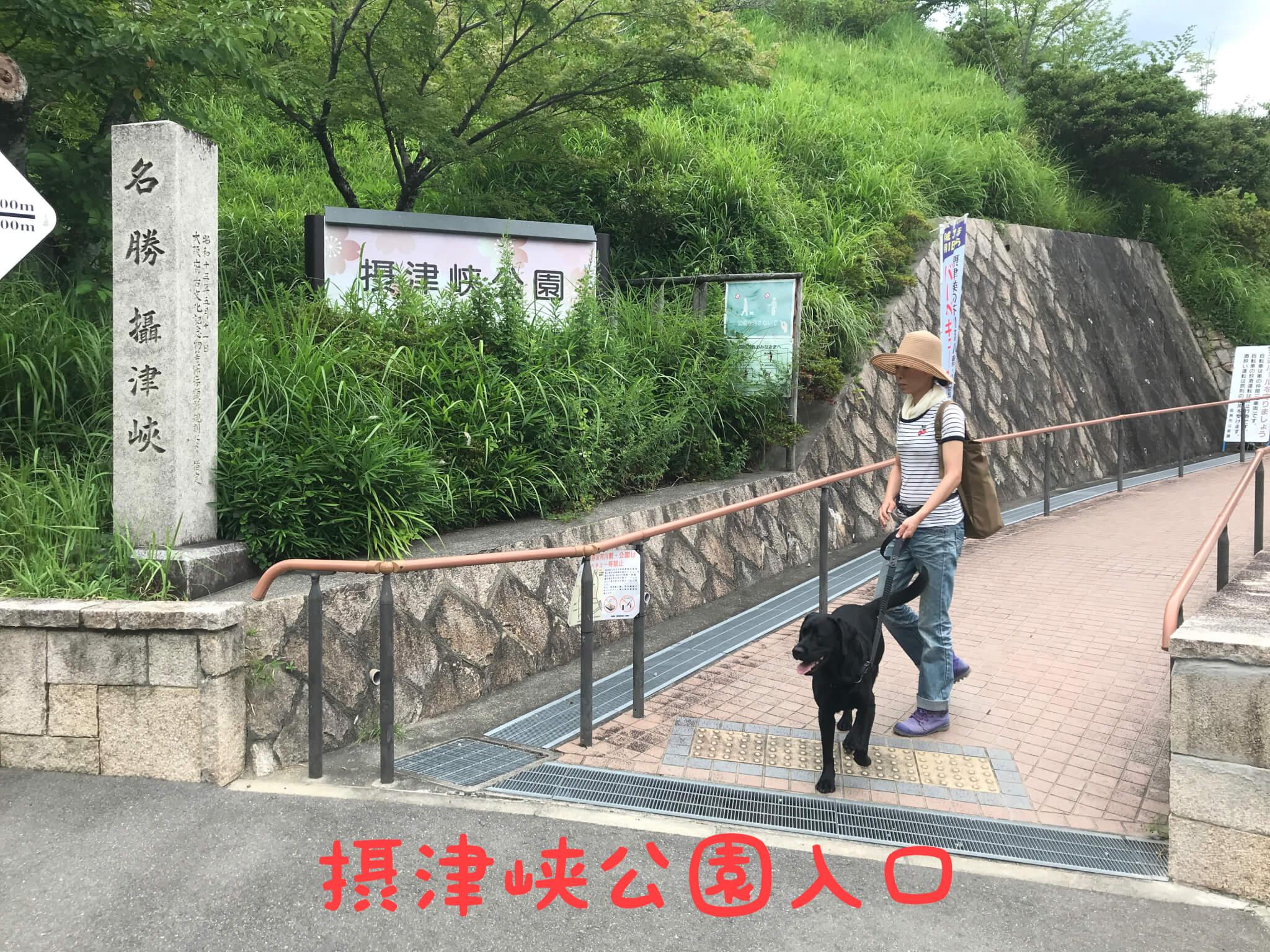 摂津峡公園入口 ラブラドールレトリバー