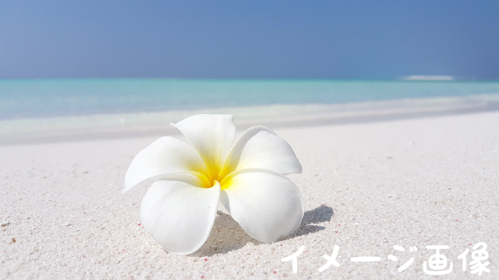 白いビーチ イメージ画像