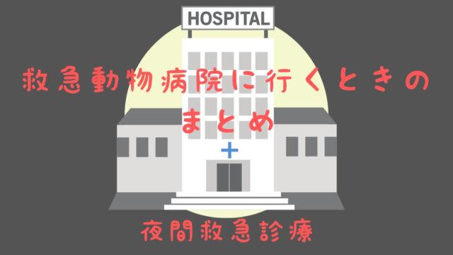 救急動物病院に行くときのまとめ 夜間救急診療
