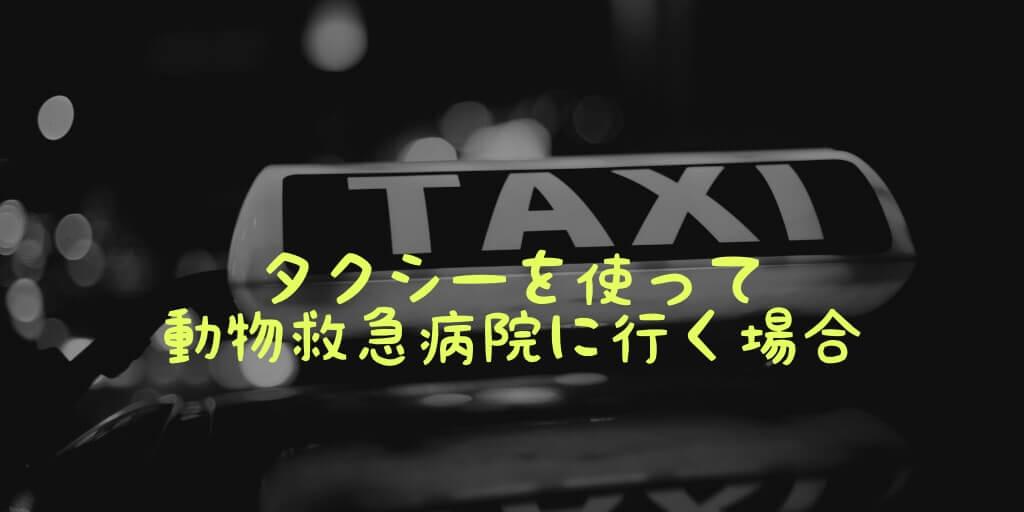 タクシーを使って動物救急病院に行く場合
